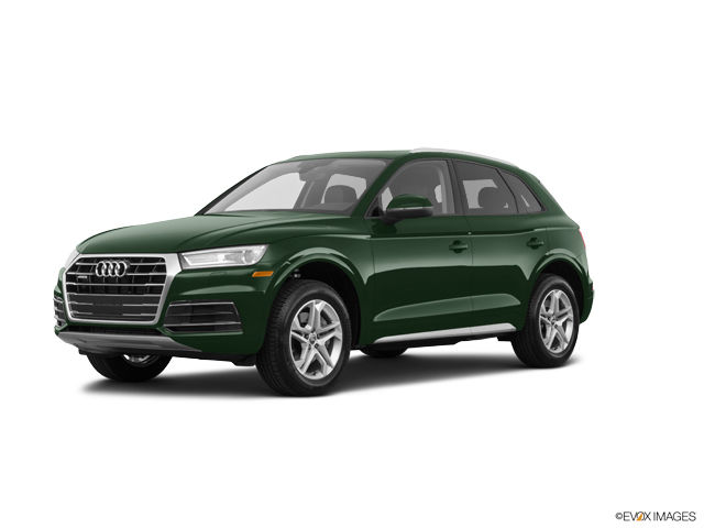 2019 Audi Q5 Image