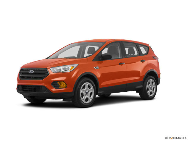 2019 Ford Escape Image
