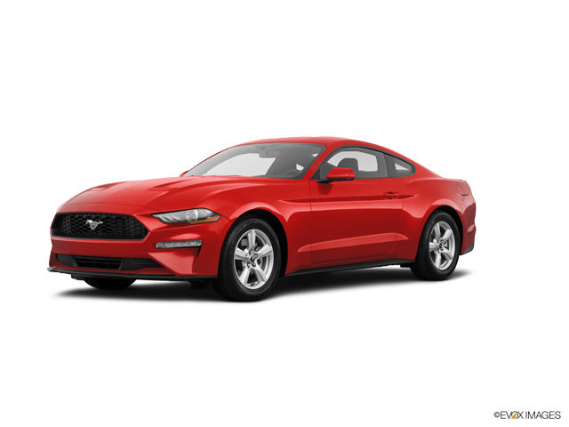 2019 Ford Mustang Image