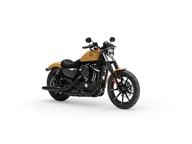 2019 Harley-Davidson Sportster Iron 883 Image
